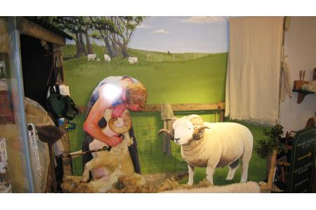 The Exmoor Horn Sheep Exhibition
