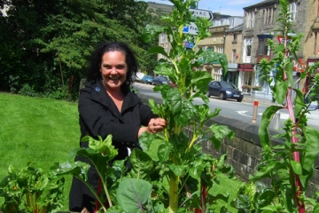 Picking veg from an IET roadside pop up garden