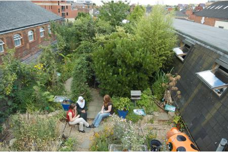 Aerial View of the Roof Garden