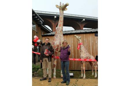 Come and visit our new giraffes