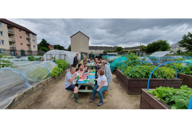 Shettleston Community Growing Project picture 2