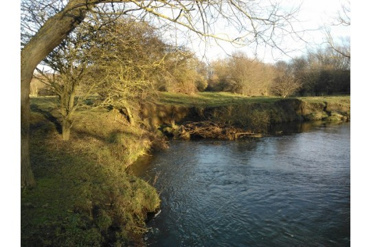 River Gaunless for People and Wildlife