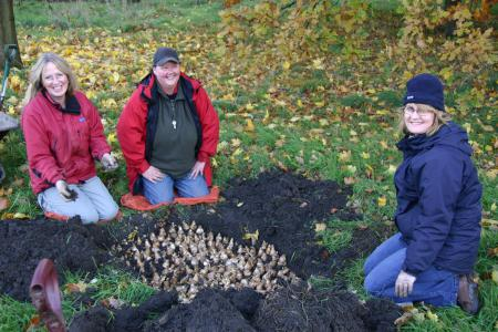 Friends of Marple Memorial Park picture 2