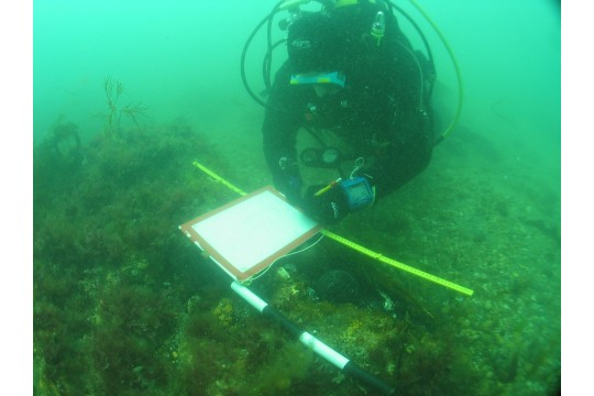 The Maritime Archaeology Trust picture 2