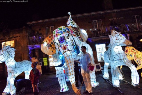 Devizes Outdoor Celebratory Arts (DOCA) picture 2