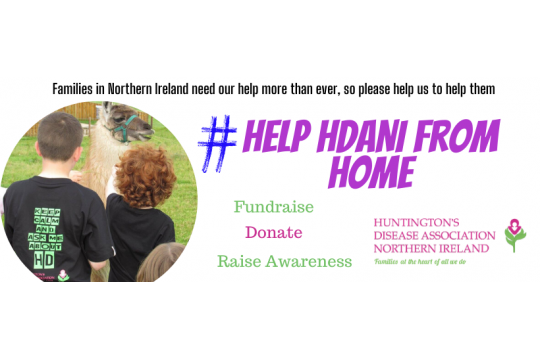 Help HDANI from Home