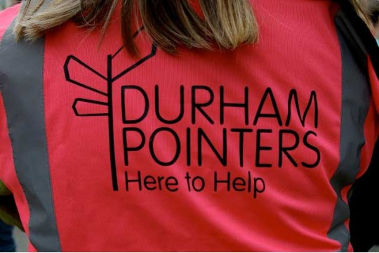 Durham Pointers picture 2