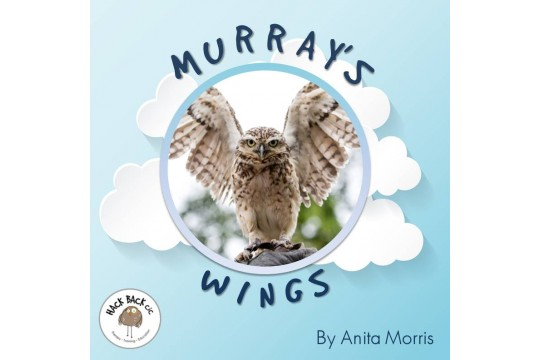 Murray's Wings