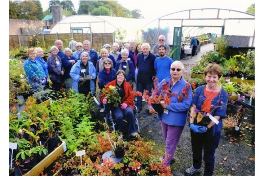 Friends of the City of Swansea Botanical Complex
