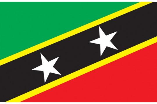 SANAS - St Kitts and Nevis Association, Slough