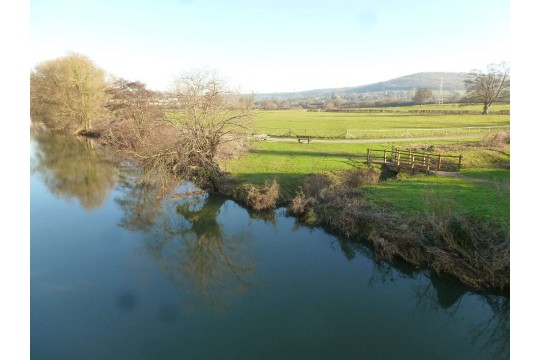 Friends of Bathampton Meadows Riverside picture 2