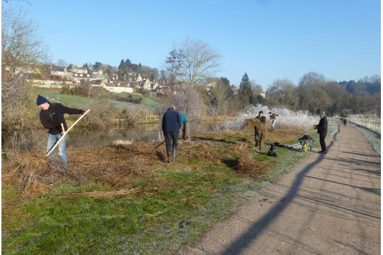 Friends of Bathampton Meadows Riverside