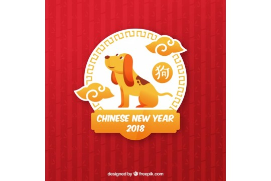 Chinese New Year Celebration Party