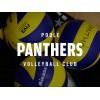 Poole Panthers VC Logo
