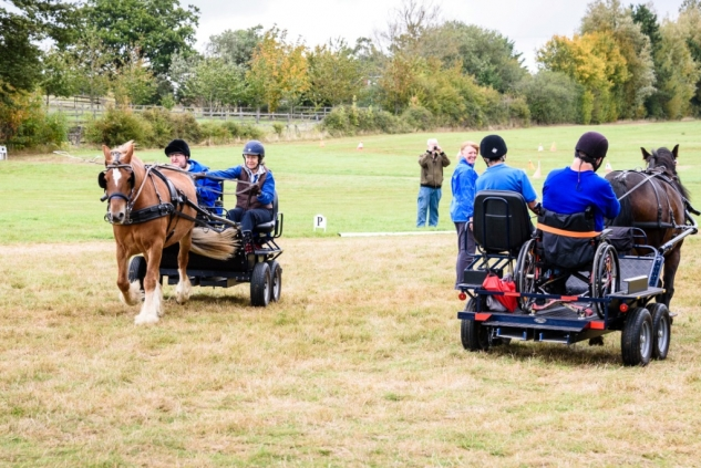 Woodchurch Driving Group RDA